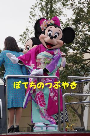 20120101 お正月ミニー