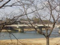 岡山城遠景
