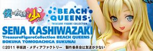 BQ_sena_banner.jpg