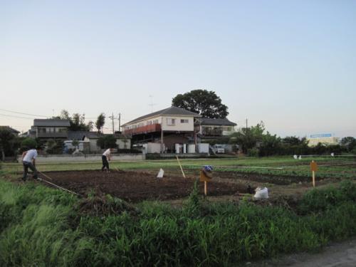 農作業中のまさちんと中国人研修生