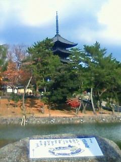 猿沢の池から五重塔