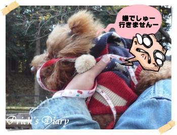 2010112701_convert_20101128130945.jpg