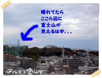 2010112718_convert_20101128210350.jpg