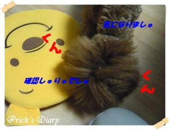 2010120109_convert_20101201191538.jpg