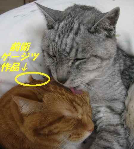 booako_201409201403.jpg