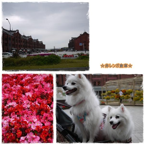 13_20110506221530.jpg