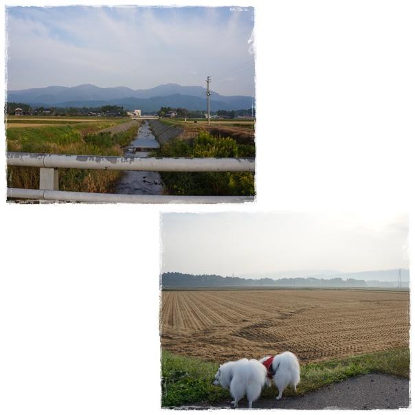 18_20111013082255.jpg