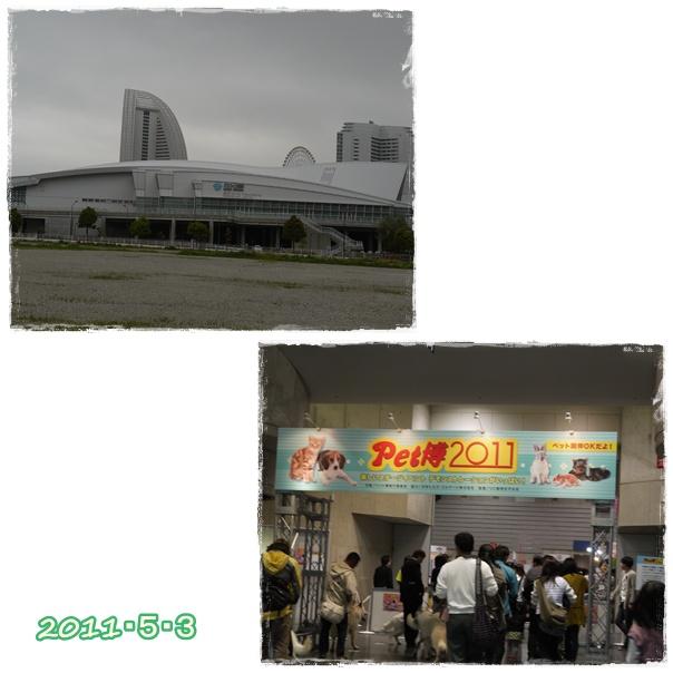 3_20110506220107.jpg