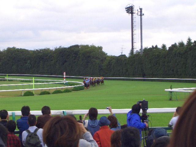 3冠の菊花賞ディープインパクトのレース(20051023撮影)