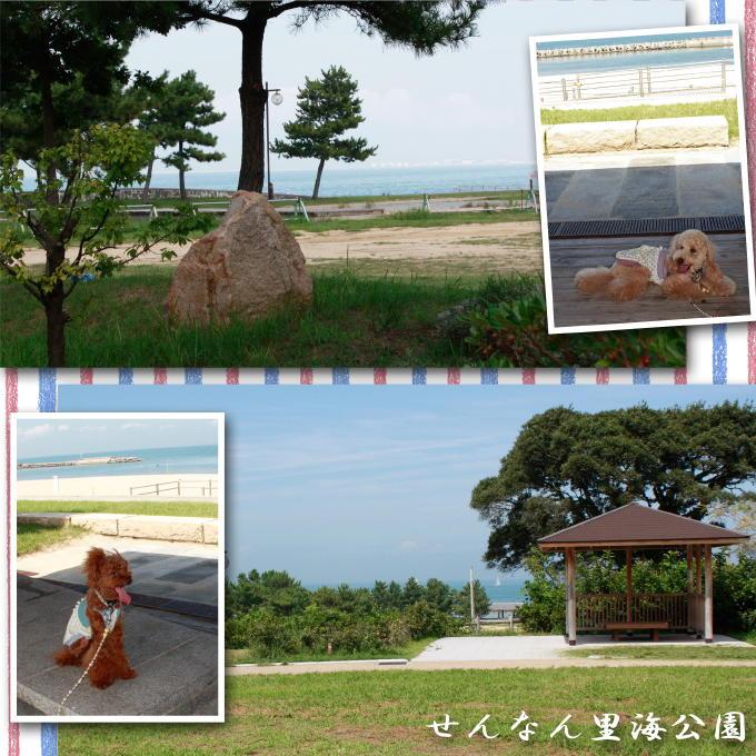 23_20110917201506.jpg