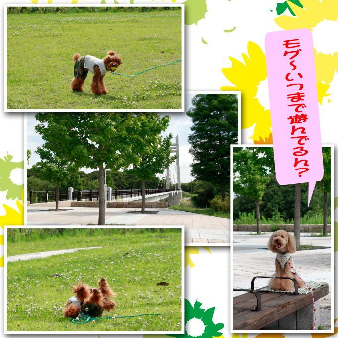 2_20110718215106.jpg