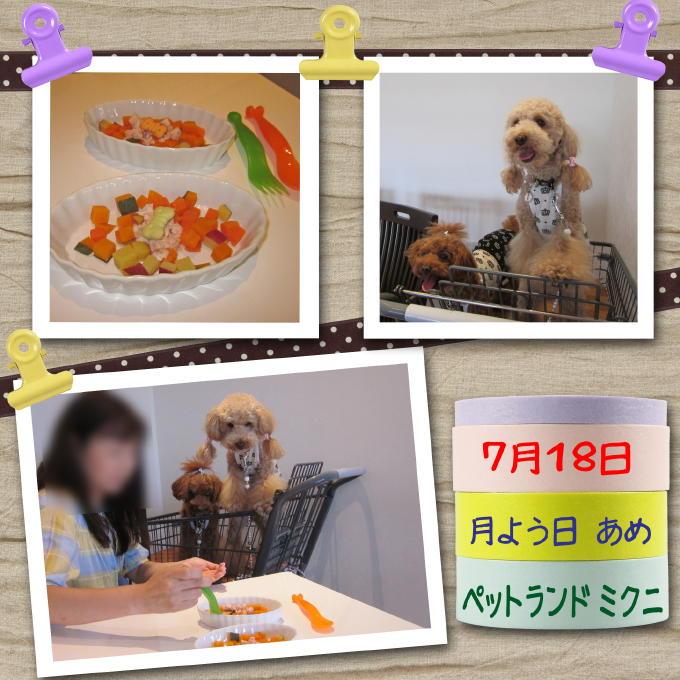 2_20110731184033.jpg