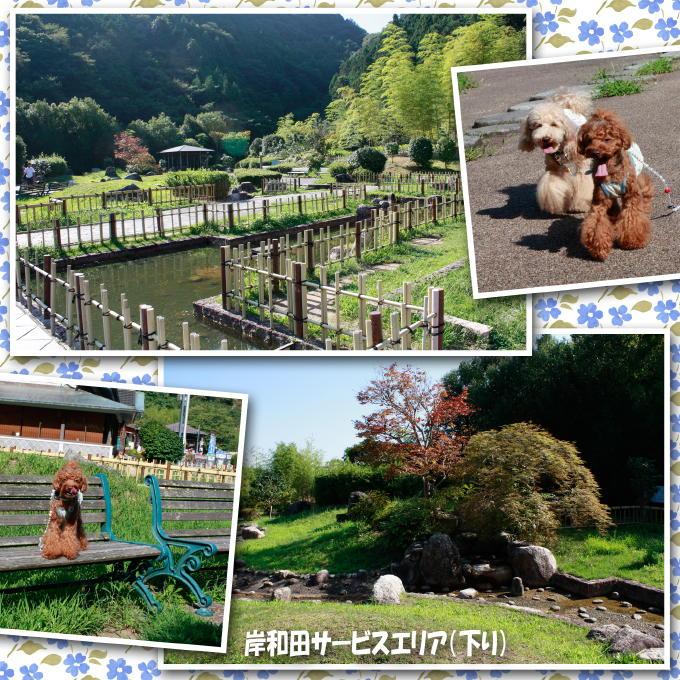 2_20110914200819.jpg