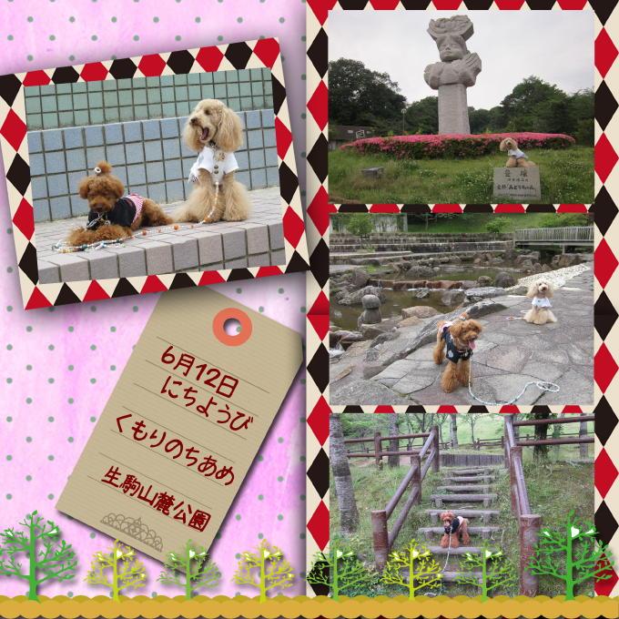 3_20110620211144.jpg