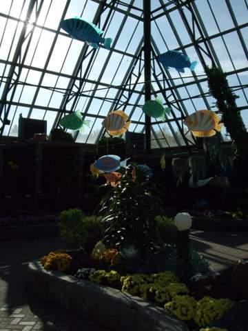 Muttart Conservatory 012