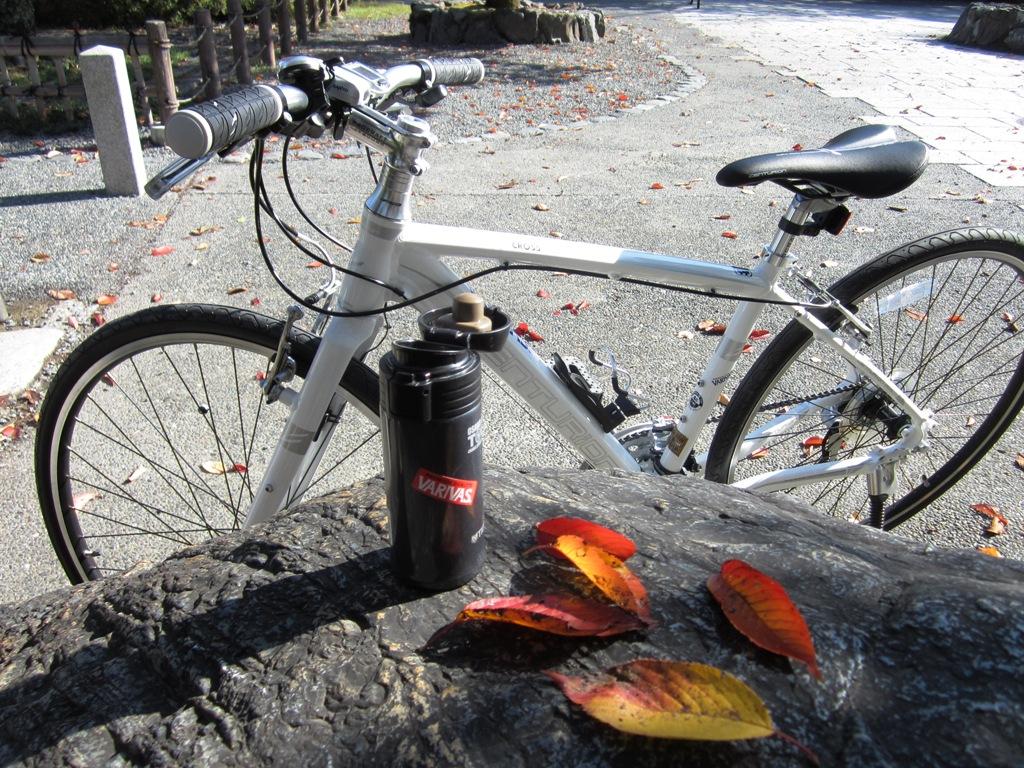 myバイク&ミニサーモ