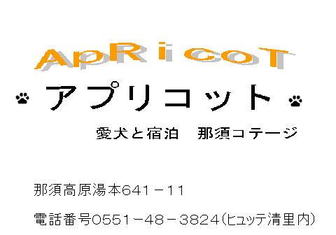20110123102426b75.jpg