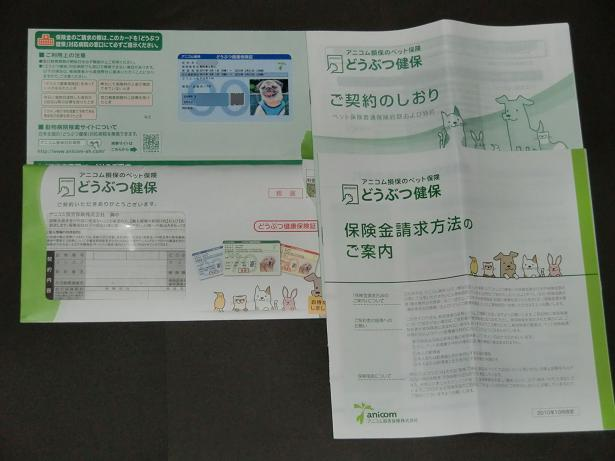 CIMG4468.jpg