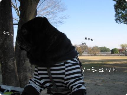 2010.12.6.2らん