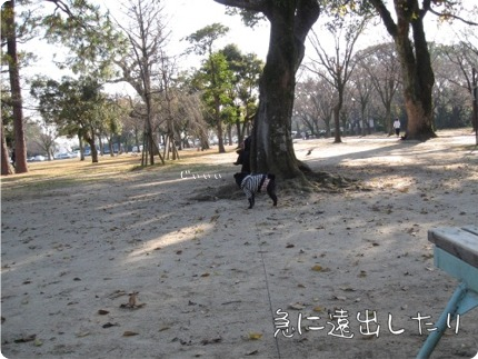 2010.12.6.12らん