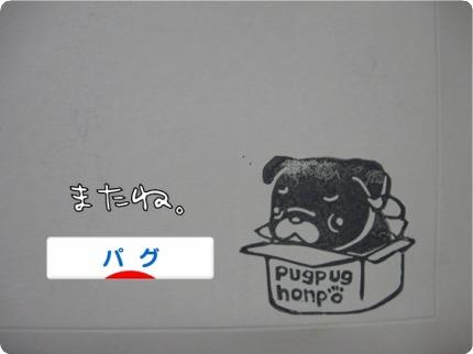 2010.12.8.7ばな