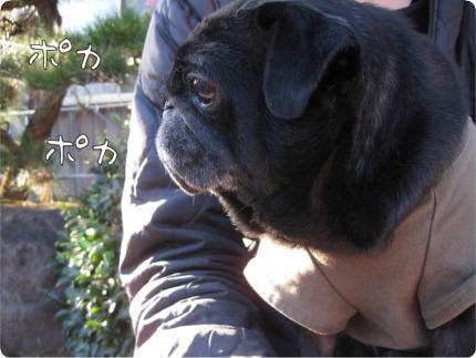 2010.12.14.3らん