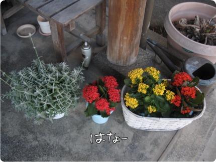 2010.12.15.3らん