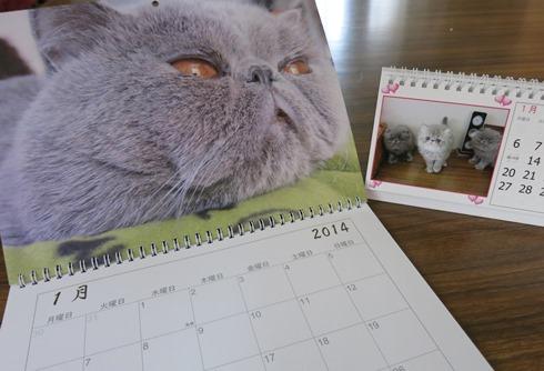 1)マルぷくベビーちゃんず1月