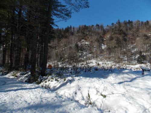 冬の山+008_convert_20121202222225