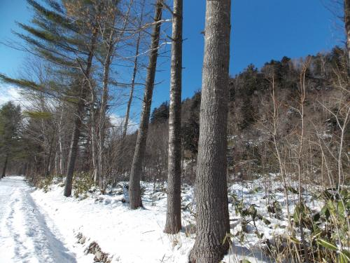 冬の山+006_convert_20121202222018