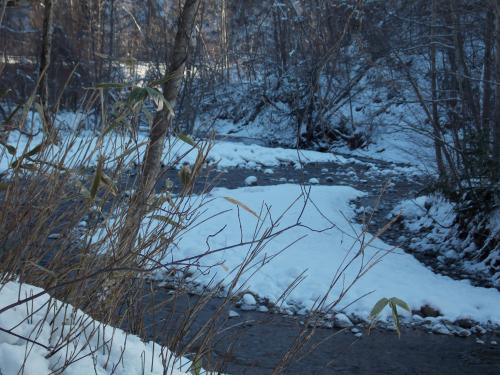 冬の山+004_convert_20121202221902