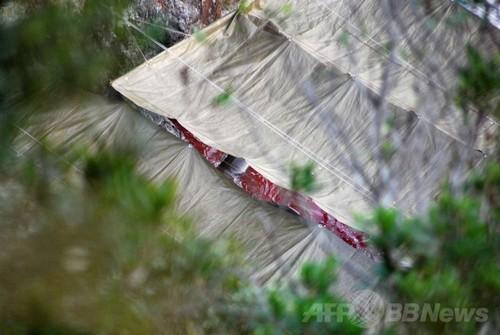 反捕鯨団体シー・シェパード(Sea Shepherd Conservation Society、SS)が撮影した和歌山県太地町でのイルカの追い込み漁で、シートで覆われた囲いの隙間からのぞく解体されたバンドウイルカ(2014年1月21日撮影)。(c)AFPSea Shepherd Conservation Society写真拡大