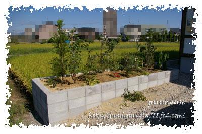 20101002-003.jpg