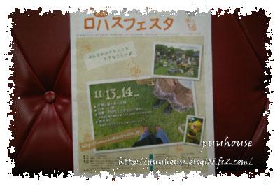 20101121-022.jpg