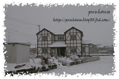 20110116-032.jpg