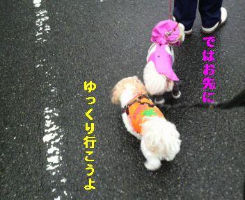 2010071117090000.jpg