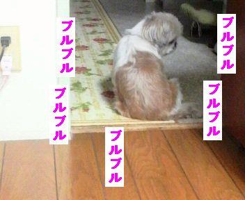 2011112016200000.jpg
