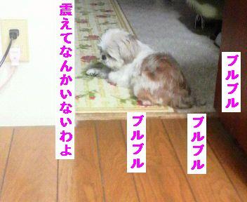 2011112016250000.jpg