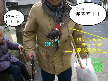 CIMG1141.jpg