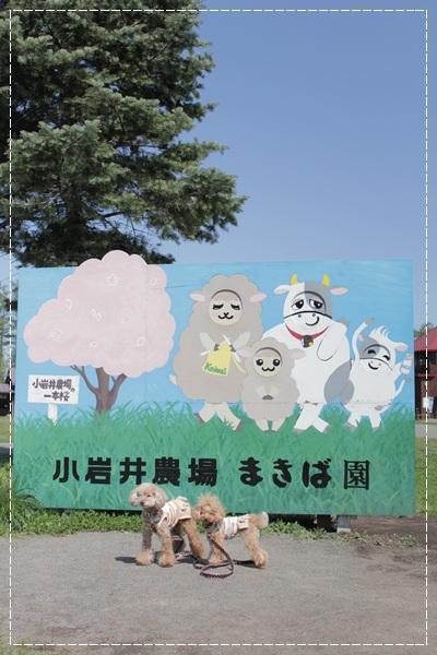 20120615_37.jpg