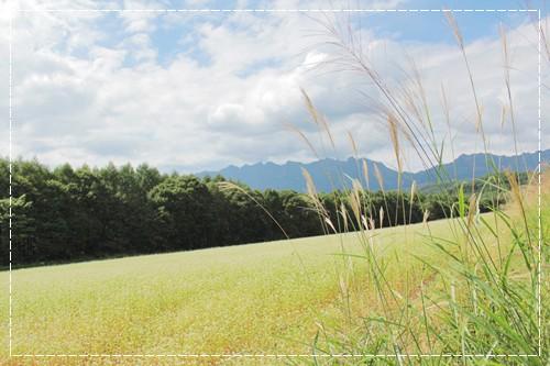 20120925_38.jpg