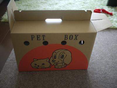 何か見覚えのあるよーな箱が。