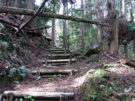 20120421-ささゆりの湯キャンプ05