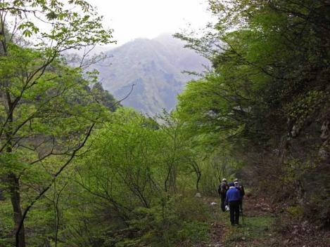 20120430-sansai-04.jpg