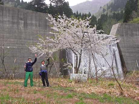 20120430-sansai-06.jpg