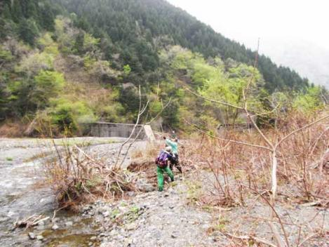 20120430-sansai-08.jpg