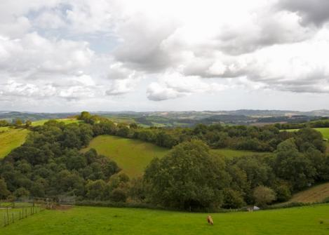 yanagiran-Dartmoor.jpg