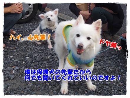 PA040056.jpg