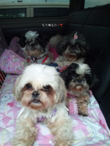 r127mikarinさんのブログ-100530_162248.jpg
