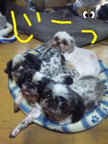 r127mikarinさんのブログ-100610_084454.jpg